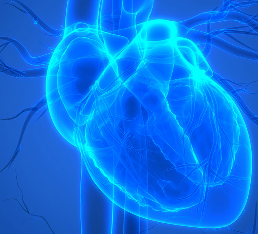 blue heart diagram