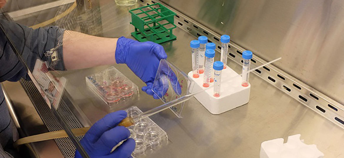 lab-research-hands-universal-832x469